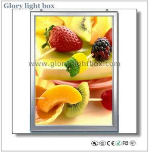Snap Frames/ Illumination Display Frames pictures & photos