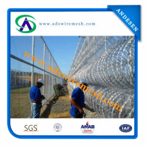 Galvanized Concertina Razor Wire/Razor Barbed Fencing/Razor Wire Fence pictures & photos