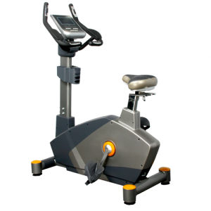 Fitness Upright Bike, Vertical Bike, Upright Cycle (U7900)
