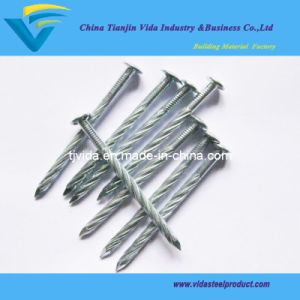 Twisted Screw Nails pictures & photos