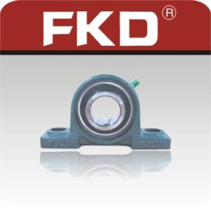Fkd Bearing Units /Pillow Block Bearing Ucp207 pictures & photos
