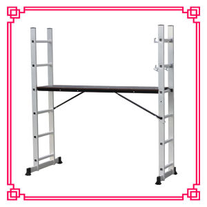 Scaffolding Ladder with 2 PCS Support Bar (DLSL101C) pictures & photos