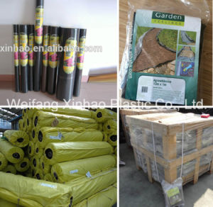 PP Ground Cover, PP Weed Mat, PP Weed Control Mat pictures & photos