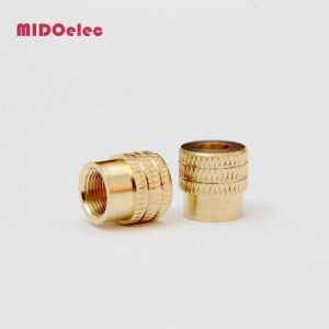 Male Female Fitting Brass Insert Nut for PVC Fitting pictures & photos