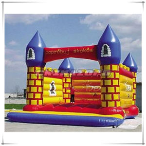Top Quality Inflated Bouncer Castle for Sale pictures & photos