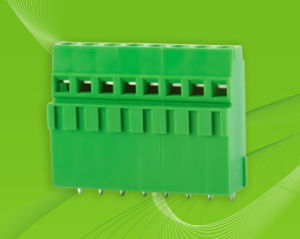 Screw Terminal Block with High Position for pictures & photos