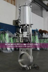 Regulator Pneumatic with Accessory Knife Gate Valves pictures & photos