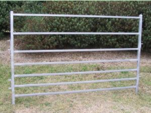 Heavy Duty Oval Rail Used Livestock Fence Panel pictures & photos