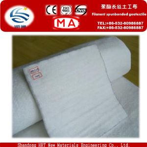 Factory Directly Supply Needle Punched Geotextile pictures & photos
