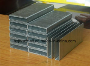 High Quality Competitve Price Factory Produce K Staple pictures & photos