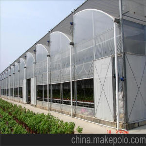 Feilongjiahe Zigzag Greenhouse for Vegetables Garden Greenhouse