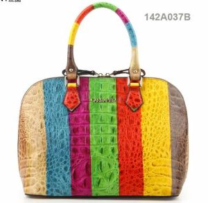 Fashion Lady PU Handbag (JYB-24006) pictures & photos