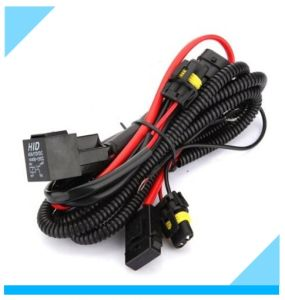China Auto Light Car Lamp Wire Harness Manufacturer pictures & photos