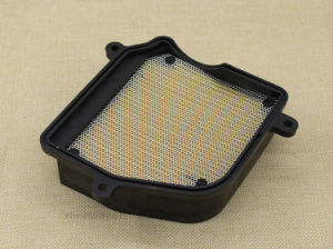 Motorcycle Part Motorcycle Air Filter for QS125/Gt125 pictures & photos