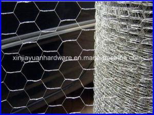 Hexagonal Wire Mesh/Chicken Wire Mesh/Galvanized Hexagonal Wire Netting pictures & photos