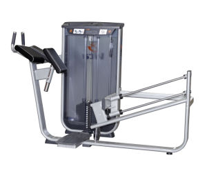 Commercial Gym Equipment for Sale - Glute pictures & photos