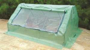 Vegetable Flower Plant PVC PE Outdoor Green House for Sale pictures & photos