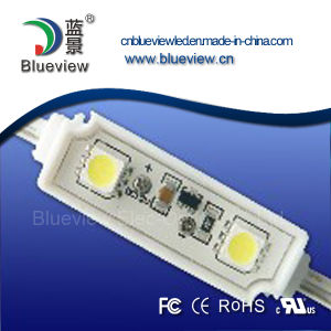 SMD 5050 2 PCS Waterproof LED Module