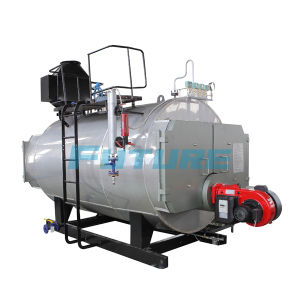 Smoke Tube Wns Oil (Gas) Fired Steam Boiler pictures & photos
