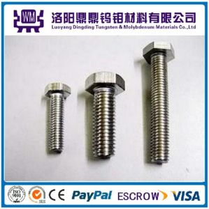 Top Grade Customized High Temperature Tungsten and Molybdenum Bolts/Nuts/Screws in China pictures & photos