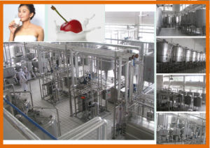 Turnkey Project for Pasteurization Milk pictures & photos
