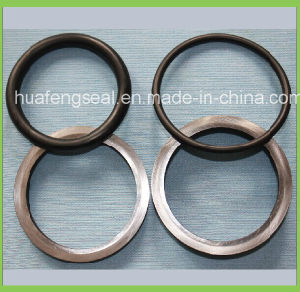 Floating Oil Seal (HF 3000) pictures & photos