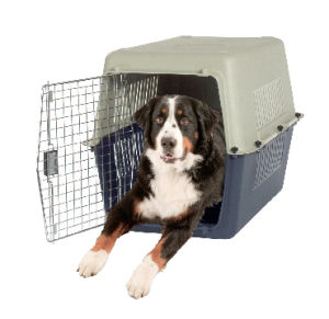 China Pet Product, Durable Pet House pictures & photos