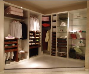 2014 New Walk in Wardrobe for Home Furniture (CE certificate) pictures & photos