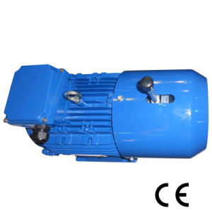 0.12~200kw Three Phase with CE Brake Motor (100L2-4/3KW) pictures & photos