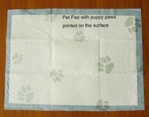 Pet Training Pad in Size 60*45cm pictures & photos