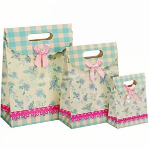 Superior Quality Laminated Paper Bag with Die Cut Handle pictures & photos