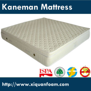 Comfortable High Quality Compressed Spring Mattress pictures & photos