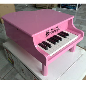 18-Key Children Toy Piano (TP18-P0I) pictures & photos