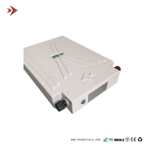 12V Ternary Lithium Battery Custom Wholesale pictures & photos