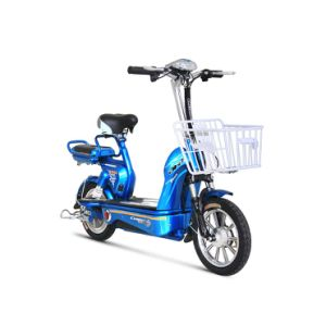 Long Distance Electric Bike pictures & photos
