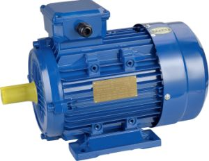 Ye2 Three Phase Induction Blower Axial Fan Water Pump Air Compressor Motor pictures & photos