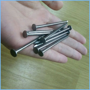 Factory Price Polished Commom Iron Nail Made in China pictures & photos