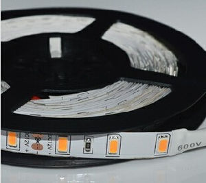 SMD 5730 LED Flexible Strip 60LED/M DC12V/24V with CE&RoHS Waterproofed