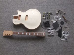Lp Style Electric Guitar DIY / Custom Electric Guitar (A126) pictures & photos