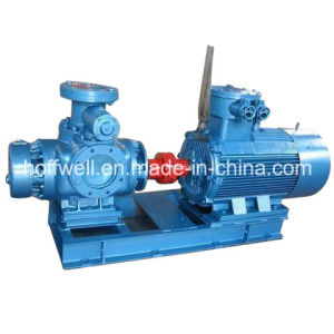W. V Series High Quality Twin Screw Pump pictures & photos