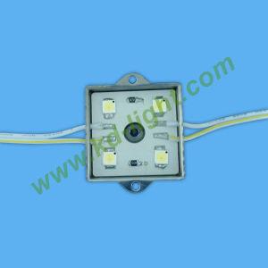 Smd LED Module (4Pcs KDM-5)