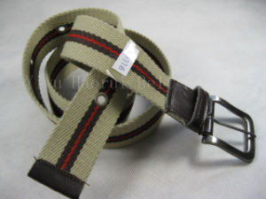 Fashion Belts (HRB177B)