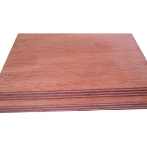 Hardwood Plywood pictures & photos