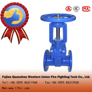 BS5163 Cast Iron/Ductile Iron Resilient Seated Gate Valve pictures & photos