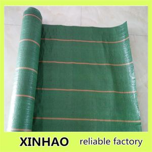 PP Woven Weed Block Cloth/Weed Control Fabric pictures & photos