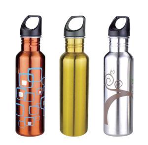 Stainless Steel Sports Bottle- 8