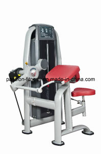 Arm Curl Commercial Fitness/Gym Equipment with SGS/CE