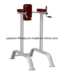 Vertical Knee Raise Free Weight Commercial Fitness/Gym Equipment with SGS