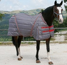Horse Rugs -1 pictures & photos