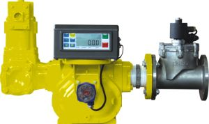 Electronic Meter pictures & photos